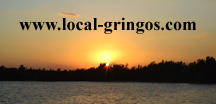 local-gringos_logo.jpg